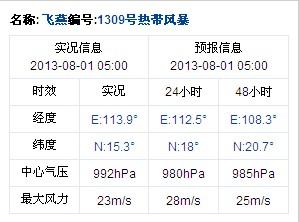 2013年第9号台风飞燕实况信息 8月1日05时发布