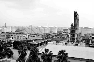 ...石井镇石化产业基地也是   南安市   唯一规模化的石化产业...