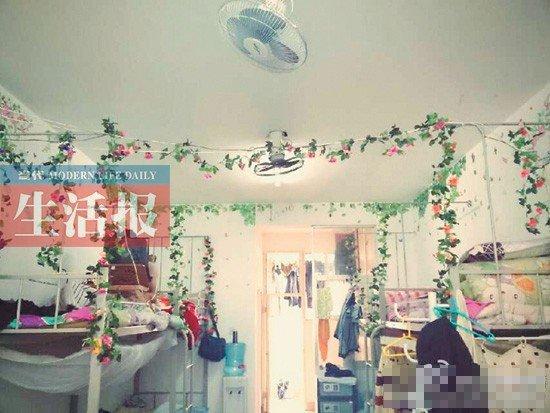 绿野仙踪风格的宿舍 (宿舍图片由受访者提供)图片